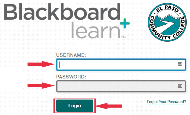 EPCC Blackboard Login